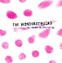 The Wonderstrucks - An American Education